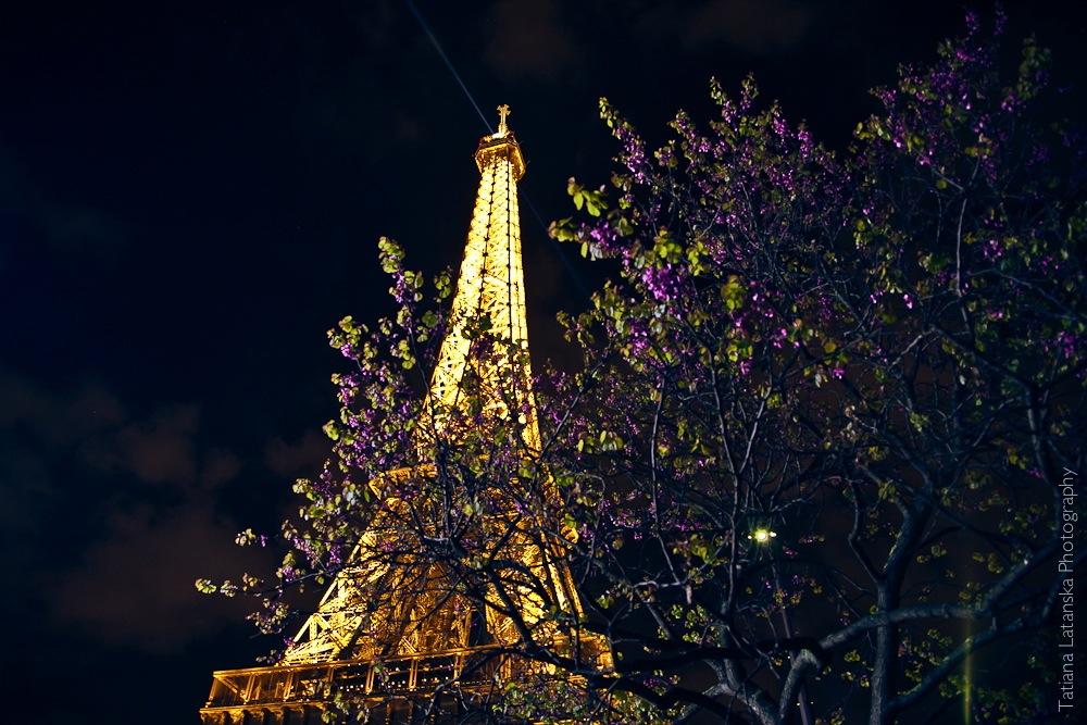 Ночной Париж. Фото Татьяны Латанской.