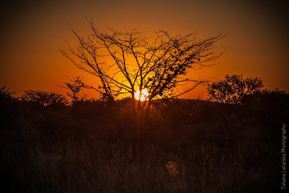 Намибия. Фото Татьяны Латанской