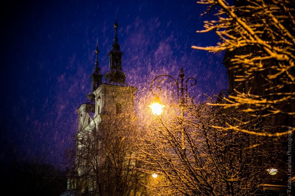 Замок в снегу